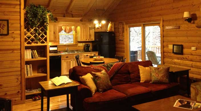 2-4-living-room-kitchen-upon-entrance-to-cabin